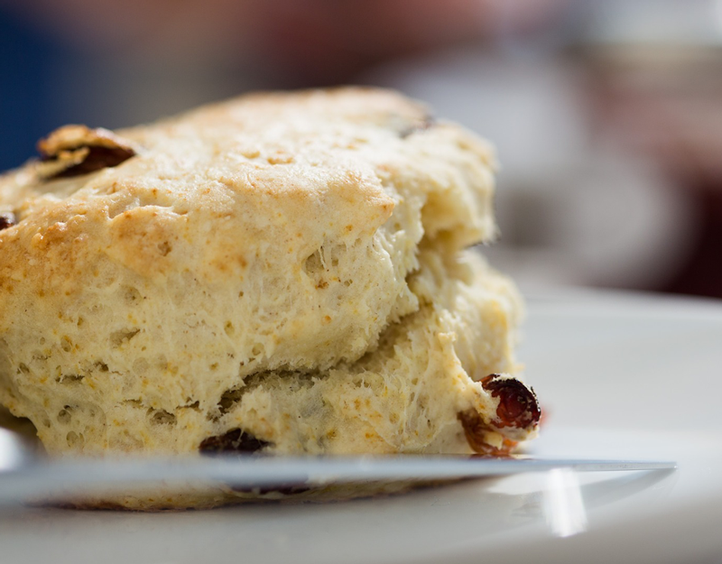 Asiago-Sun-dried-Tomato-Biscuits-Recipe---Layla's-Garlic-Whip